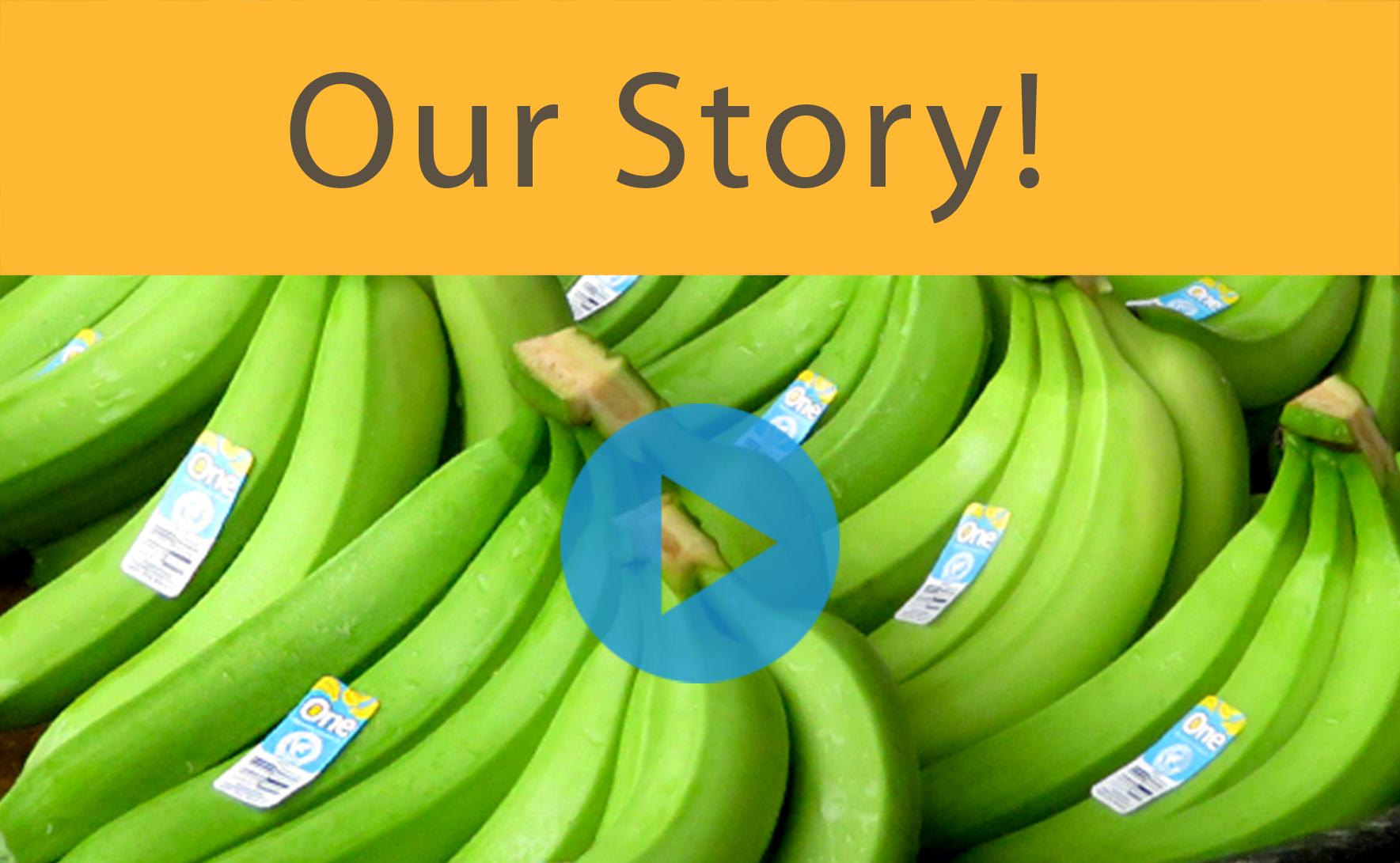ONE Banana. The Better Banana Company