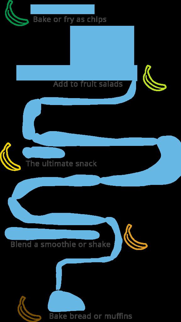 banana_path